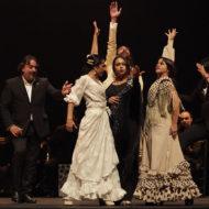 Manuel Liñan - Espectáculo Flamenco en gala