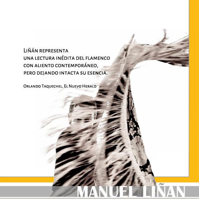 Manuel Liñán Contacto