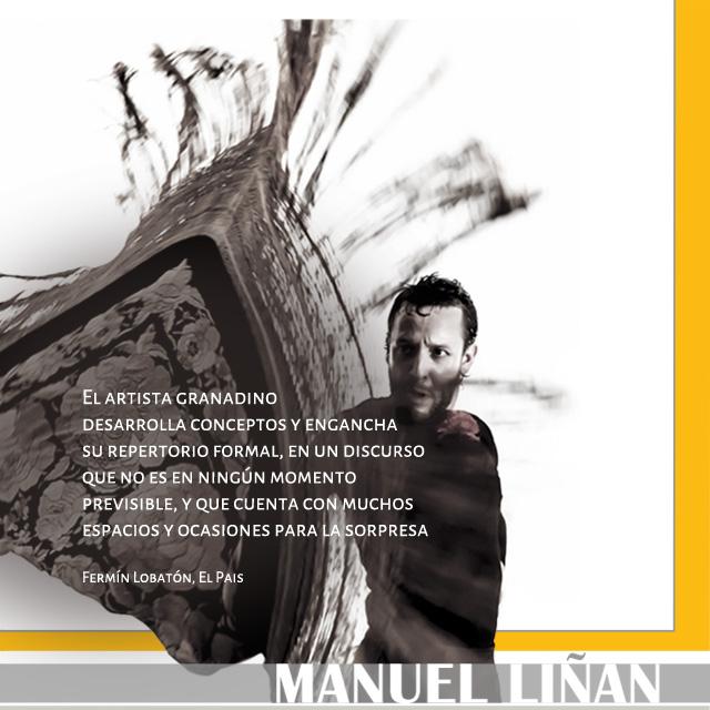 Manuel Liñán Multimedia