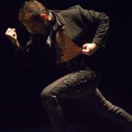 Manuel Liñan - Espectáculo Flamenco en tablao